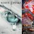 《白蛇》《西游》《大护法》,这些海报都出自她手