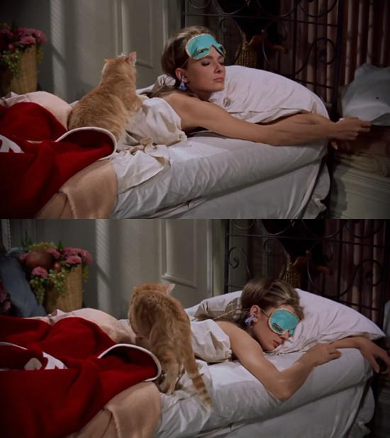 刘亦菲穿睡衣抱黑猫COS赫本 戴同款眼罩再现经典 第2张