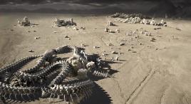 地球毁灭,人类逃到600光年外的星球,却发现巨型蛇怪尸体