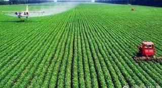 河南农业气象部门联手发挥气象趋利避害作用 保障农业丰收