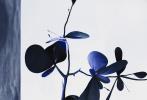1月13日,李冰冰《时尚先生》开年首封曝光,全黑系造型伫立于画面中央,整体氛围感十分的赛博朋克,封面中眼神坚毅笃定超cool,暗黑风格和具有环保理念的设计感元素结合,突破以往的大片风格。