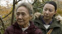 《又见奈良》发布中国母亲特辑