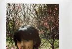 """《向往的生活》新一季开播在即,日前,一组张子枫春游桃林的美照曝光,让人不禁感叹""""妹妹太甜了!"""""""