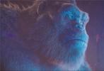 由传奇影业、华纳兄弟影片公司联合出品的好莱坞史诗级怪兽灾难巨制《哥斯拉大战金刚》全国影院正火热上映中!截至目前,影片票房成绩已经突破11亿大关,且增长势头依旧不减,有望超越上一部《金刚:骷髅岛》的成绩,刷新怪兽宇宙票房新纪录。