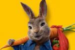 真人(188金博好还是beplay)动画《比得兔2:逃跑计划》发布中文版预告片