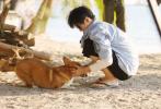 5月16日,工作室分享了一组王俊凯《恰好是少年》大片,解锁少年的海岛时光。海风沙滩,脚踩细沙,与柯基嬉闹,追逐阳光,远离喧嚣,放慢节奏感受生活的美好。  