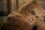 胡歌出演16岁橘猫挑战动物演技 网友赞人猫合一
