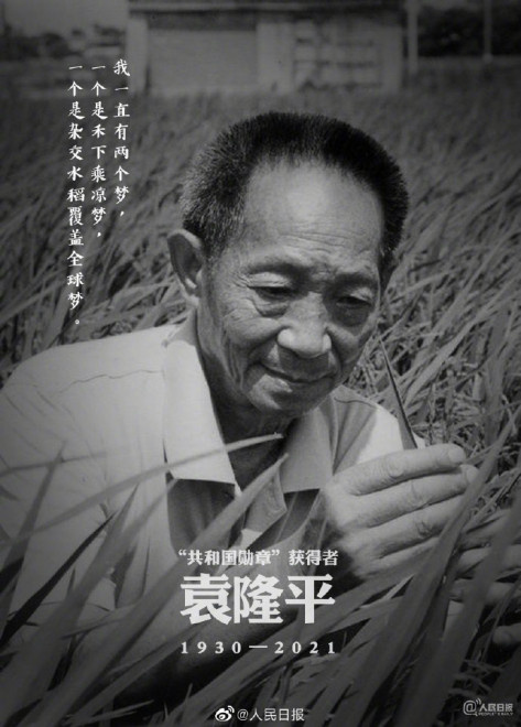"""追悼""""杂交水稻之父""""袁隆平 传记片记录伟大梦想"""