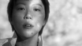 《只是一次偶然的旅行》曝主题曲《乐园》MV