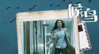 《候鸟》入围四大国际电影节 路演进尾声看哭20城