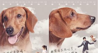 宠物奇幻片《再见汪先森》曝角色海报及剧情预告