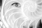 7月16日,周迅登封《时尚芭莎》八月刊封面大片发布。奇妙的光影世界里,周迅演绎摩登自由的奇幻之旅。光影摇曳的梦幻星河中,周迅仿佛金色波光中的精灵,复古摩登、率性灵动,眼神充满故事感。