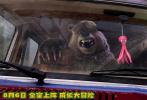 """由3D视觉教父本·史塔生与《神偷奶爸》编剧卡尔·布伦克联手打造的亲子冒险动画电影《我的爸爸是森林之王2》将于8月6日正式公映,日前曝光定档预告。作为四年之后该系列的第二部作品,由前作顶级动画团队原班人马打造的电影《我的爸爸是森林之王2》,在延续前作世界观的基础上,讲述了""""大脚丫""""亚当一家人与松鼠、棕熊等一众""""萌宠""""远赴阿拉斯加与黑心石油公司展开大作战的故事。"""