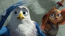 《老鹰抓小鸡》定档预告