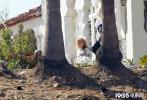 """当地时间9月7日,""""小丑女""""玛格特·罗比现身新作《巴比伦》(Babylon)洛杉矶片场。顶着一头蓬松金发的她,穿长T恤玩起""""下半身失踪""""。"""
