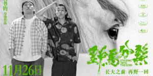 《野马分鬃》定档11月26日 周游佟林楷掀狂野旋风