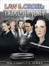 """Law & Order: Trial by Jury"""