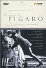 Noces de Figaro, Les